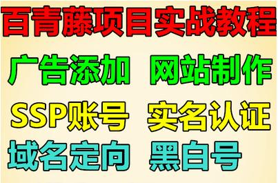 百青藤账号项目教程 SSP联盟 域名定向 实战视频 建站推广 玩法