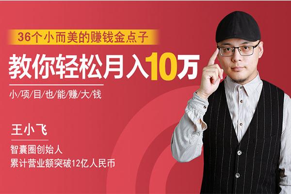 36个小而美的赚钱金点子,教你轻松月入10万【荔枝-王小飞】(完结)
