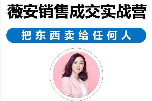 薇安28天销售高手训练营第3期 销售成交实战营 【薇安】(完结)