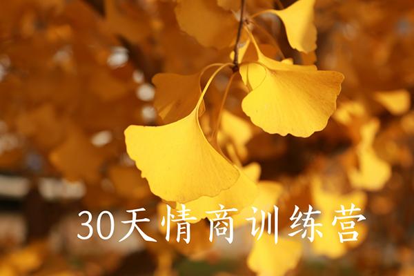 第4期 30天情商训练营【晚情】(完结)