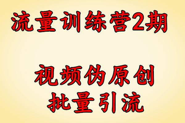 流量训练营第2期YY内部课程:视频伪原创批量引流【创奇学院】(完结)