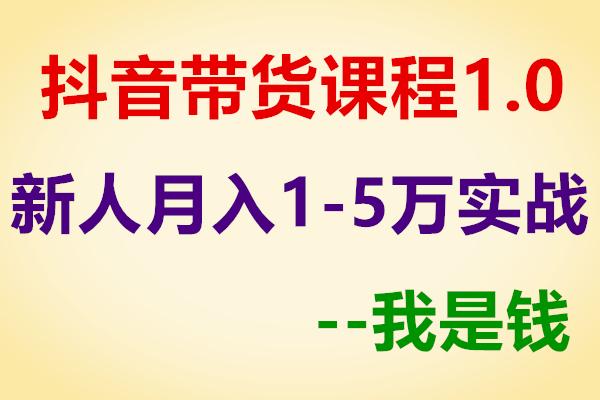 抖音带货课程1.0:新人月入1-5万实战方法【我是钱】