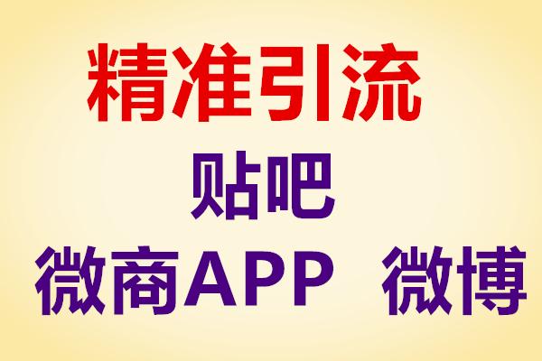 李白精准引流商学院贴吧卖软件项目【李白】(原价498)