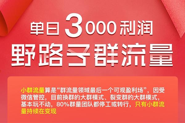 单日3000利润 野路子群流量  包含全部软件(原价998)