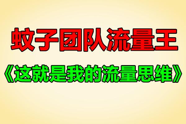 蚊子团队流量王代表作:《这就是我的流量思维》(原价1280)