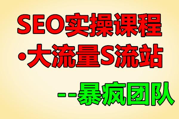 暴疯团队VIP之SEO实操课程之大流量S流站(原价3000)