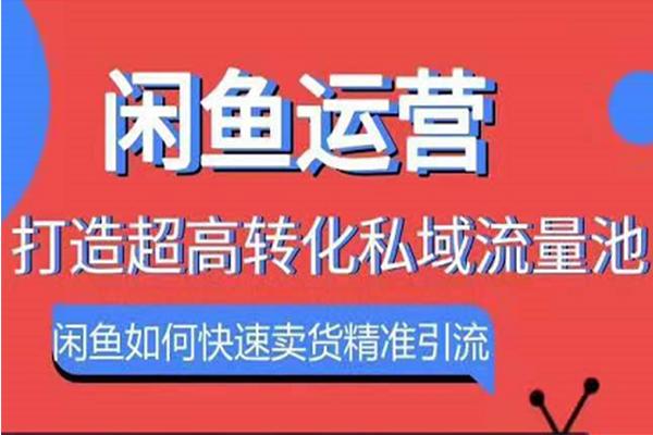 闲鱼运营:如何快速卖货精准引流【胜子】