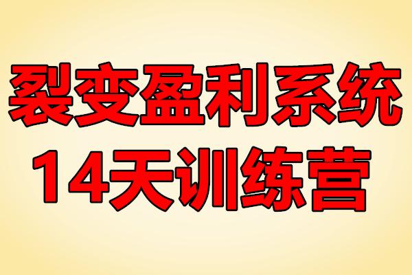 裂变盈利系统14天训练营【王六六】(原价799)