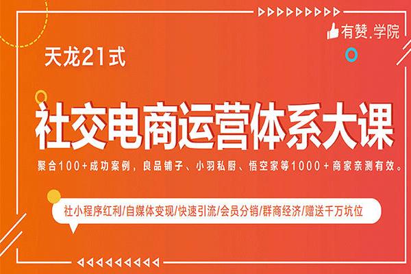 社交电商体系大课,有赞天龙21式(原价599)