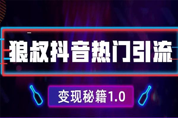 抖音热门引流变现秘籍1.0,人人都可以捞金的项目【狼叔】(原价199)