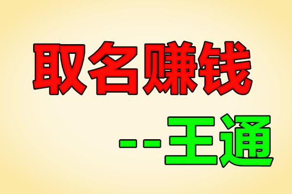 小领域:取名技能也能快速赚钱【王通】(原价888)