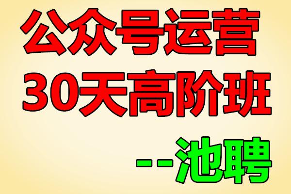 公众号运营·30天高阶班丨插座池骋亲自带班【池骋】(原价299)