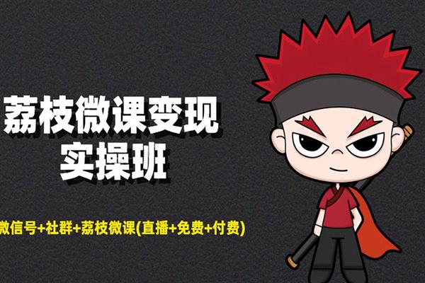 荔枝微课变现实操班(原价199)