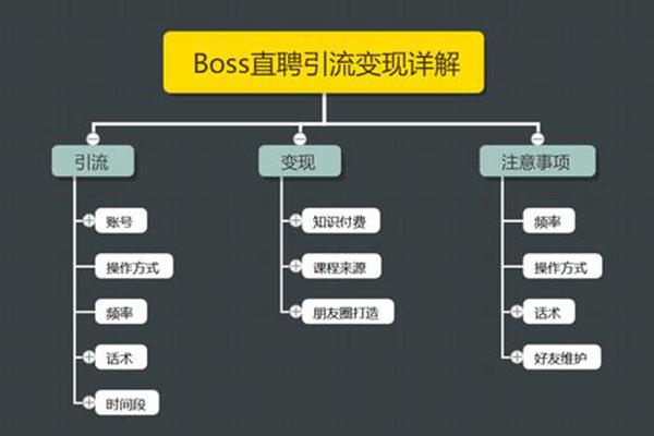 Boss直聘引流变现详解,让网络赚钱更简单!【王半圈】