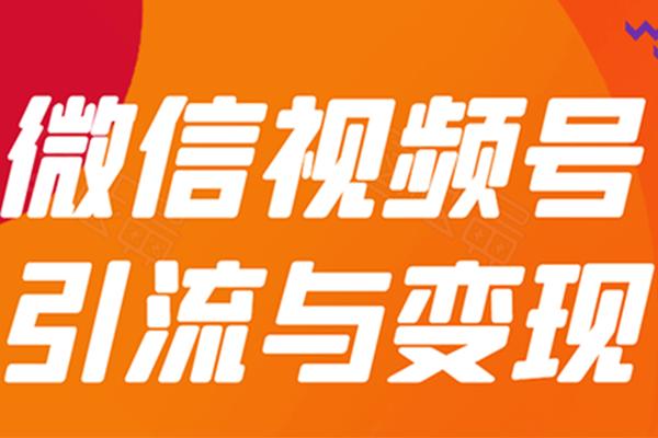 微信视频号引流与变现-全面玩法【贺友会】(原价399)